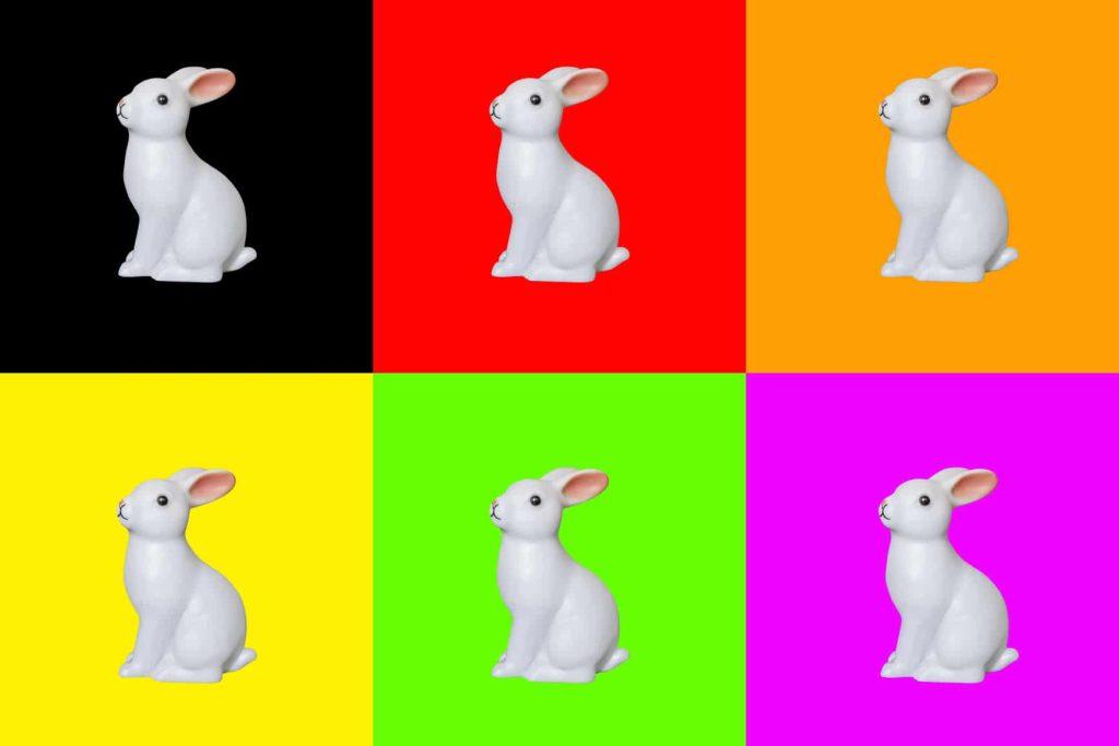 bilder freistellen auf farben